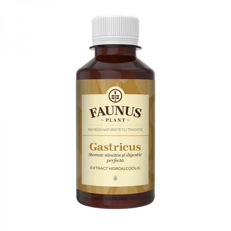 Tinctura Gastricus 200ml