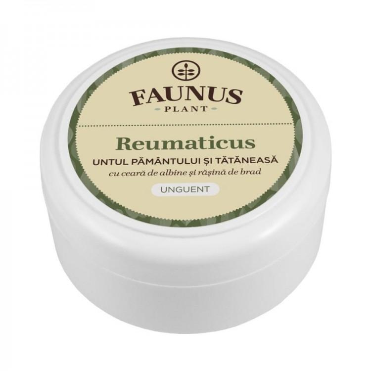Unguent Reumaticus 100ml
